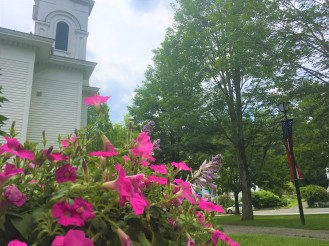 flowers-townhall